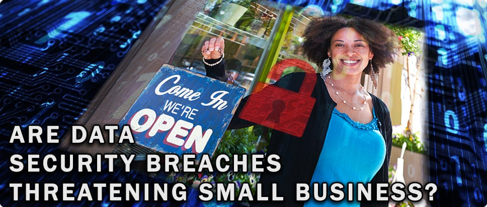 Are Data Security Breaches Threatening Small Business?